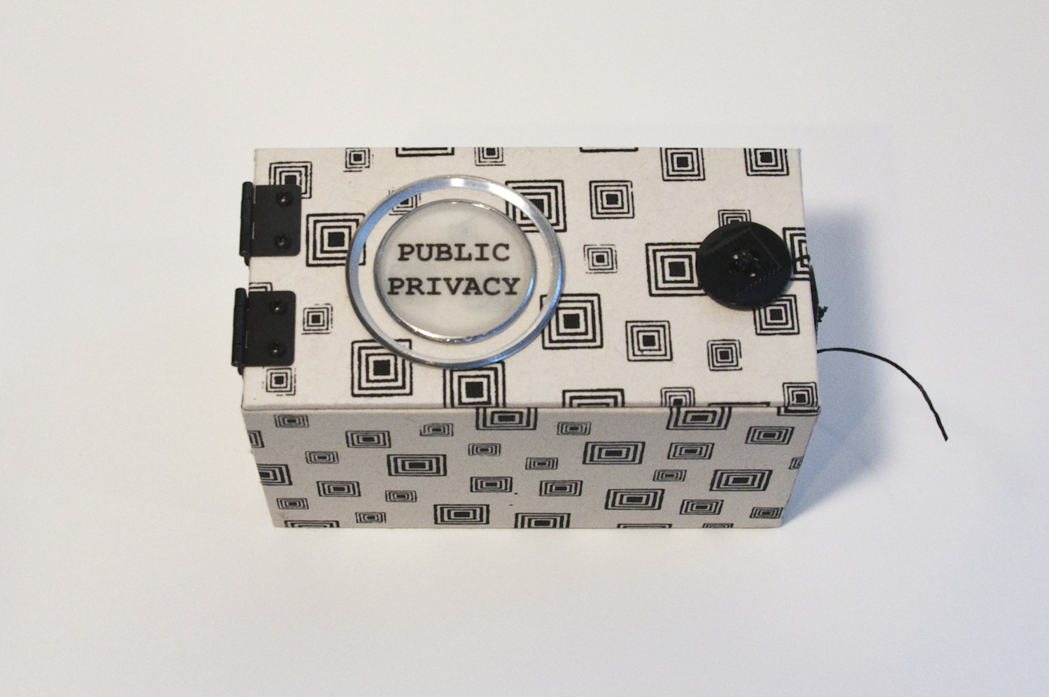 """Ginger Burrell, """"Public Privacy"""""""