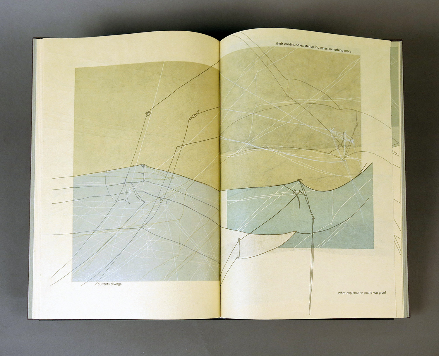 """Sara Langworthy, """"On Physical Lines"""""""