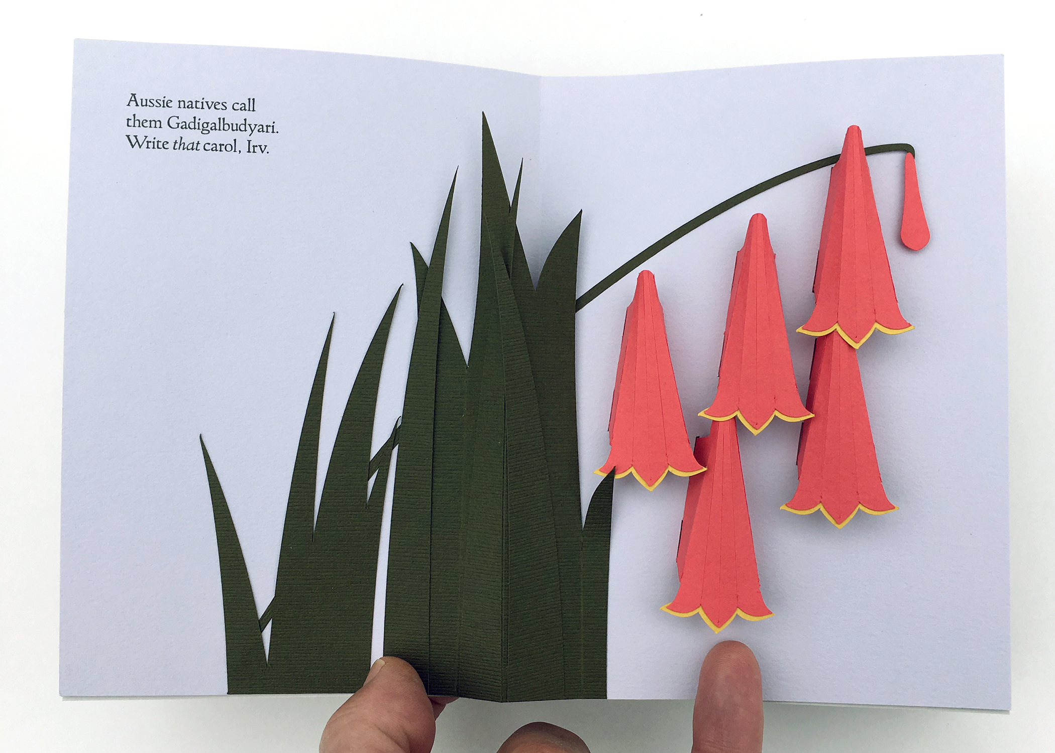 "Shawn Sheehy, ""Fresh Cut Xmas: A Well-Trimmed Survey of Holiday Plants"""
